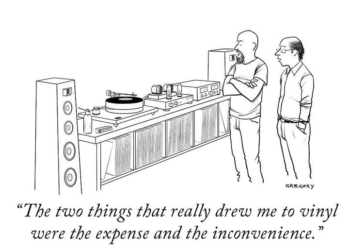 Vinyl Expense